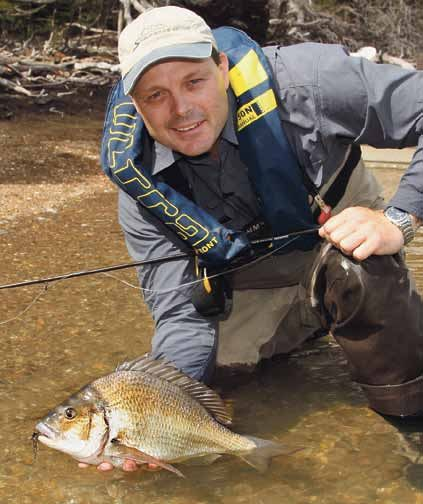 102 life learning gold boomer bream