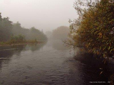 2016 04 24 Beautiful foggy conditions Meander River at Meander