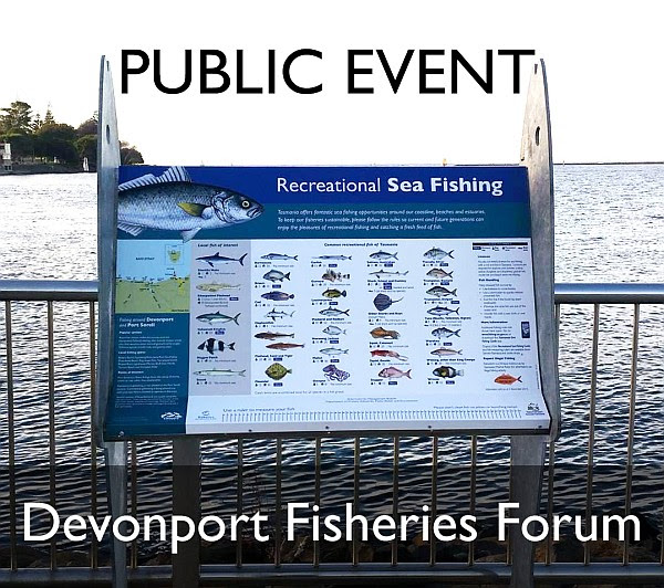 devonport fisheries forum